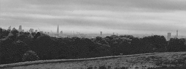 hampstead-heath-bw